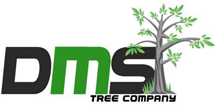 DMS Tree Removal Melbourne